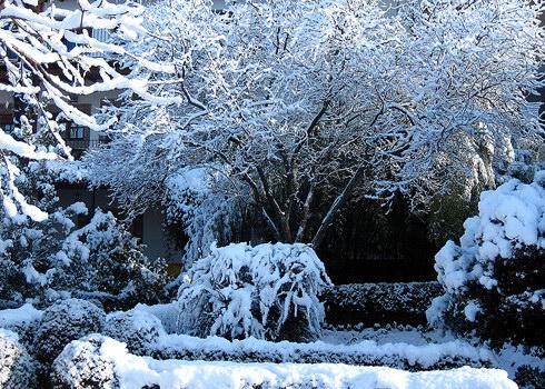 Casa rural el jard n del convento herv s c ceres for Jardin de invierno loi suites