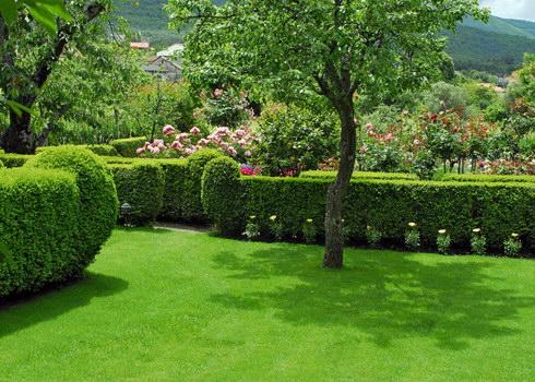 Casa rural el jard n del convento herv s c ceres for Casa rural jardin del desierto